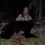 bear-2009-0004