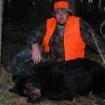 bear-2009-0009